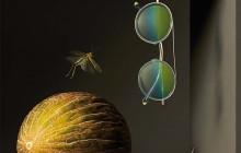 Las lentes de Etnia Barcelona ofrecen la mejor experiencia visual