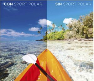 Sport Polar